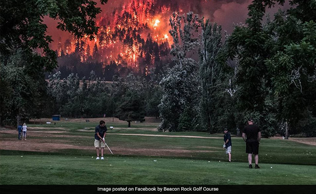 Three golfers calmly continue their game as wildfire blazes behind them