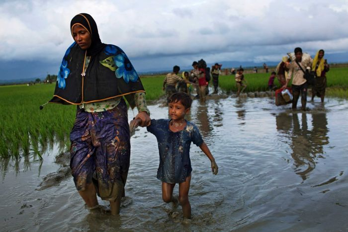 Diplomats fly to Cox's Bazar to see Rohingya camps