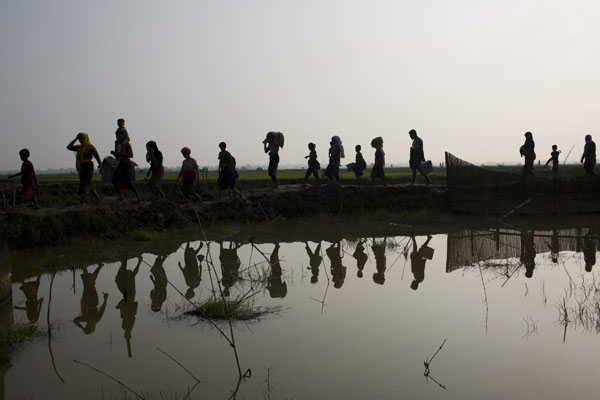 12 Nobel laureates seek UNSC intervention to end Rohingya crisis