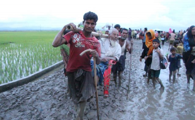 400,000 Rohingyas arrive Bangladesh since Aug 25: Unicef