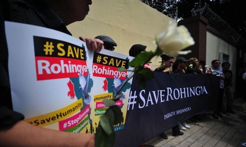 379,000 Rohingyas have fled to Bangladesh: UN