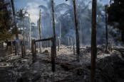 Myanmar military deliberately burning Rohingya villages: HRW