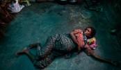 Among Rohingya refugees 70,000 pregnant women: Nasim