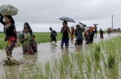 Rohingyas face threats in India, Nepal