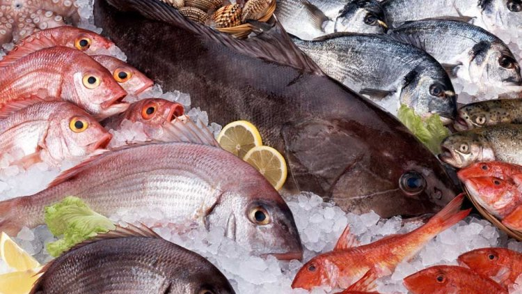 Iran earns $400 million from seafood exports