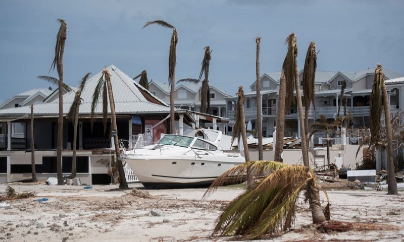 Irma toll up to 50 dead in Florida: official