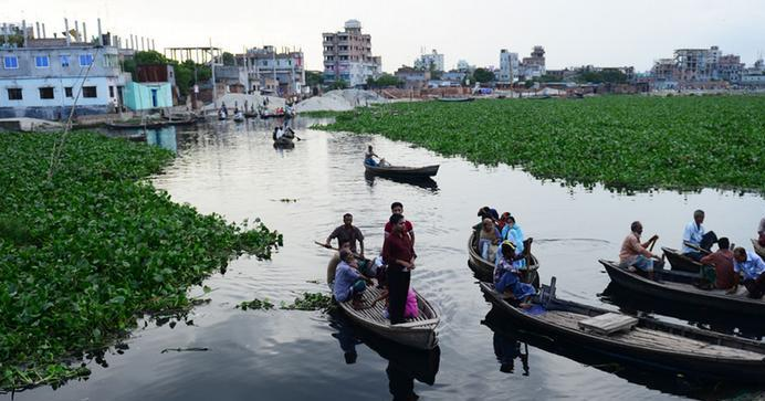 Removal of Hazaribagh tannery reduced 40 percent pollution of Buriganga: Anisul