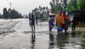 Tk 2 billion sought  to repair 2,000 km  flood-damaged roads