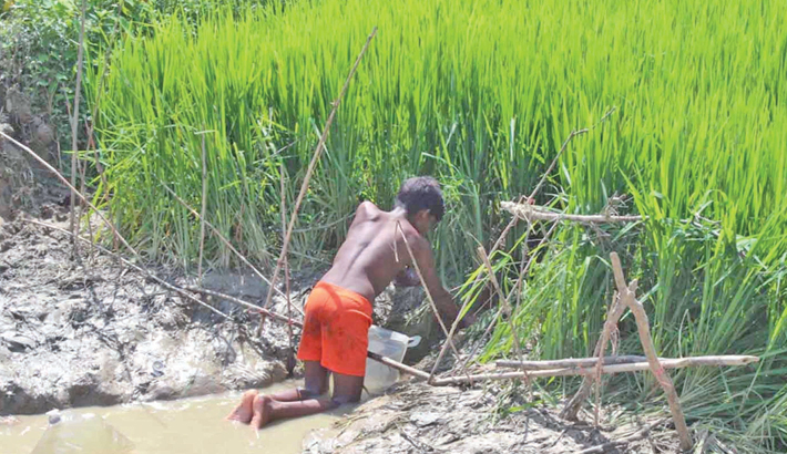 Unicef supplies for Rohingya kids arrive