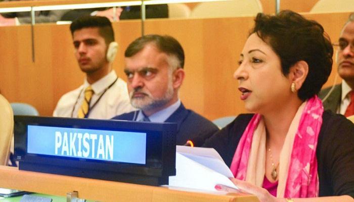 Pakistan invokes Arundhati Roy to attack Sushma's UN speech