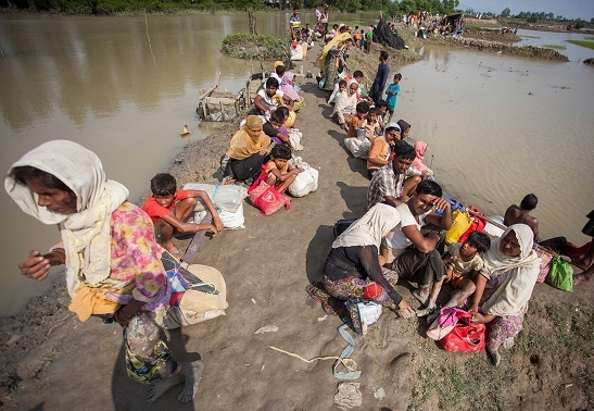 Undocumented Rohingyas see 3.7-fold rise: Report