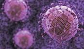 Effective antibody attacks 99% of HIV strains