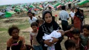 9 support teams to give healthcare to Rohingyas