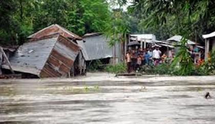 Rangpur flood victims in urgent need of rehabilitation