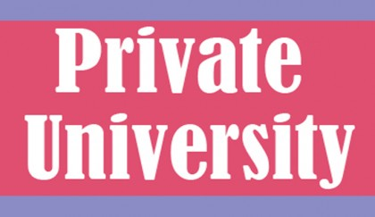 12 pvt varsities run with 50pc part-time teachers