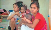 Bali volcano evacuees 'should return home'