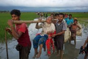 US lauds Bangladesh's role over Rohingya issue