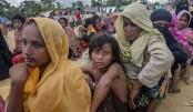 Myanmar to take back new Rohingya arrivals