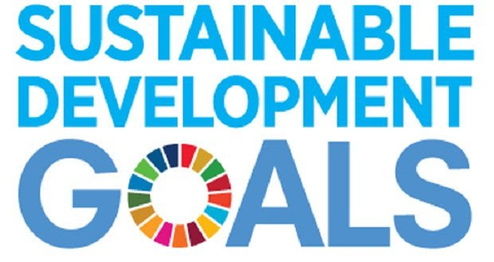 Adequate investment needed for achieving SDGs
