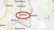 Housewife killed 'by husband' in city