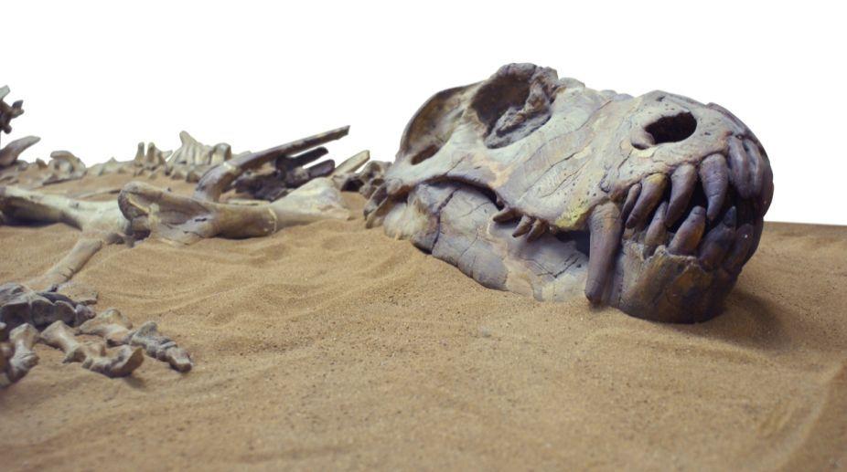 Dinosaur fossil found in Thailand