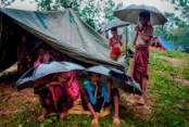 Kathmandu lauds Dhaka's role over Rohingya issue