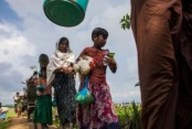 $112.5mn needed to address Rohingyas' requirements till Feb: UNHCR