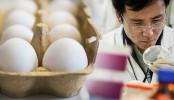 Japan scientists grow drugs in chicken eggs