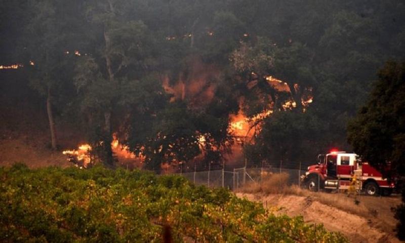 dailysun_wildfire.jpg