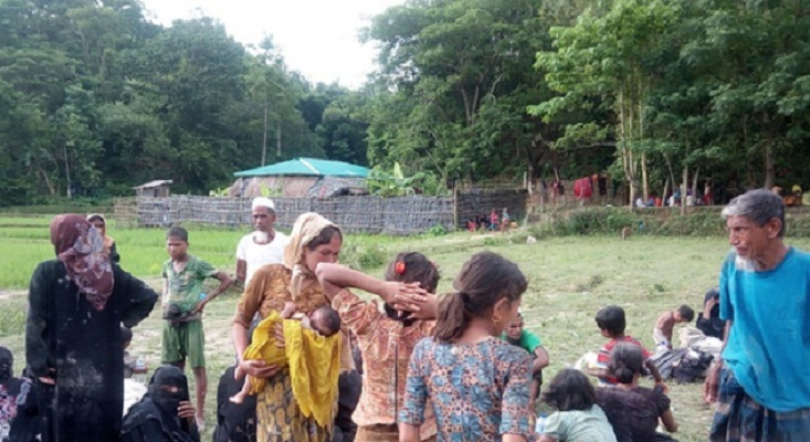 2,500 acres of forest land destroyed for Rohingya influx