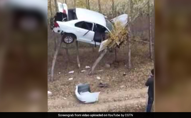 How did this car end up stuck in a tree? Bizarre sight shocks onlookers (Video)