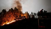 Death toll soars to 31 in Portugal and Spain wildfires