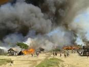 Myanmar army killed hundreds of Rohingya: Amnesty