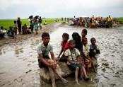 50 pc Rohingyas, stranded in no-man's land, entered Bangladesh