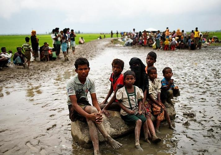 50 pc Rohingyas, stranded in no-man's land, entered Bangladesh