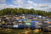 Rohingya Crisis: Unicef wants urgent action in 4 key areas