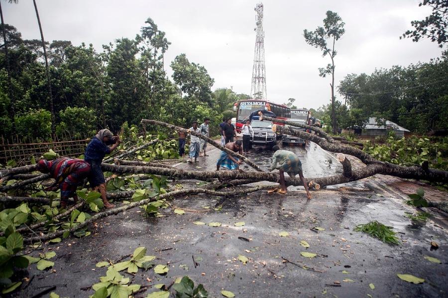 Fallen tree halts traffic between Dhaka and northern region