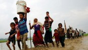 Step up support for Rohingyas: AI