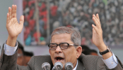 BNP pins hopes on people to 'restore' democracy