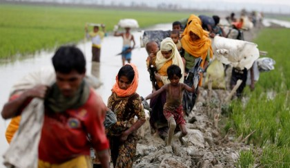 Force Myanmar to end   Rohingya persecution