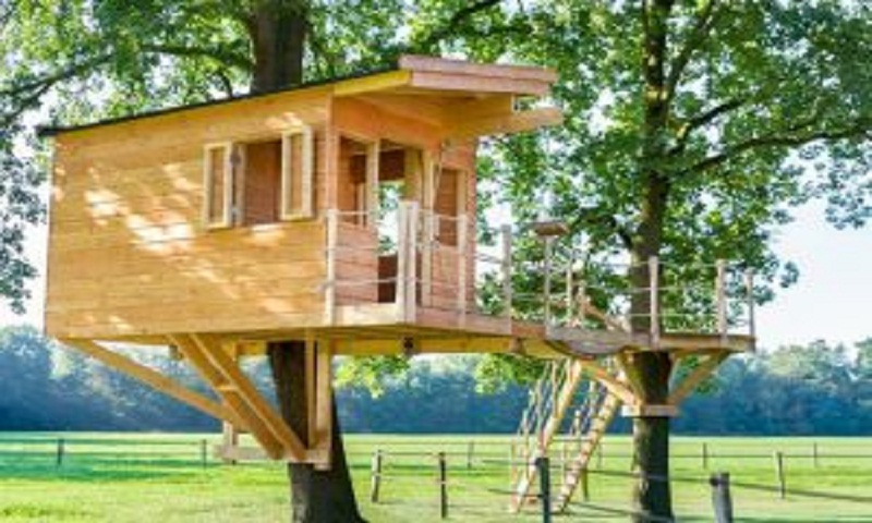 Go tripping tree house