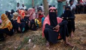 US won't label Myanmar's Rohingya treatment as 'ethnic cleansing'
