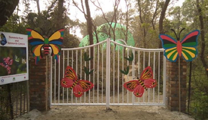 Jahangirnagar University annual Butterfly Fair on November 3