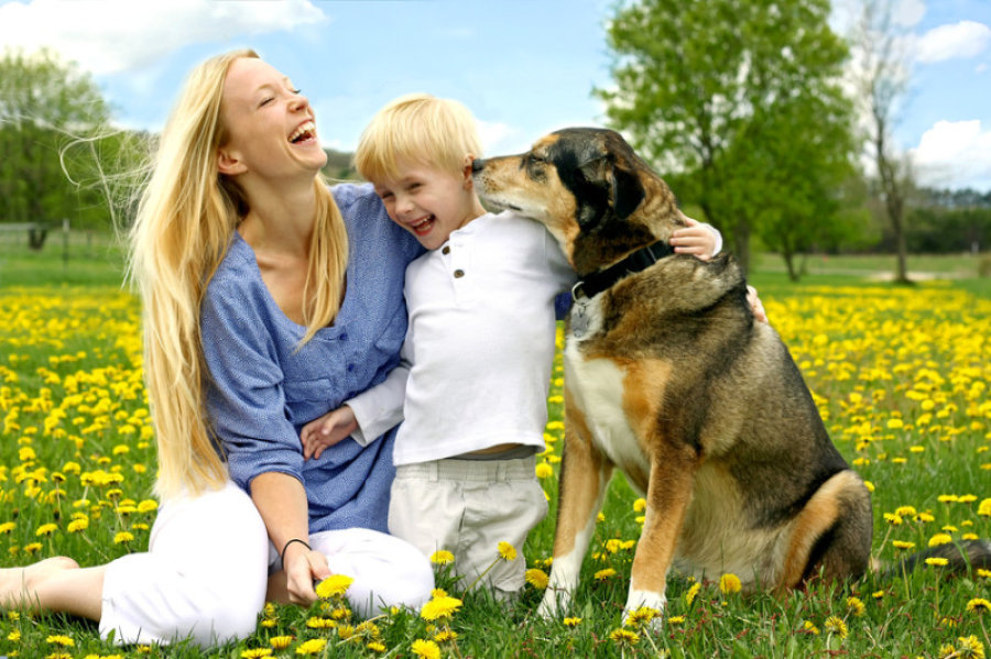 Dogs may prevent childhood eczema, asthma: Study