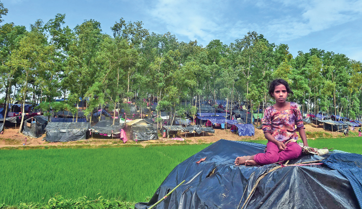 Deforestation a hidden cost of Bangladesh