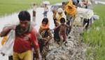 Rohingya arrivals now 607,000