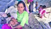 Rohingyas' response poor
