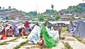 Are We Jeopardising Our Lives For Creating Fate For Rohingyas?