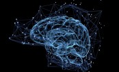Key chemical to erase unwanted thoughts