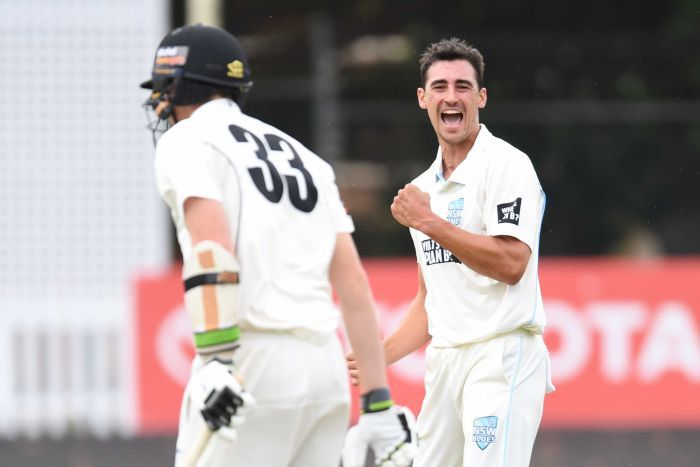 Starc fires Ashes warning with hat-trick